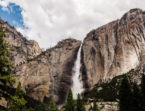 Enjoy National Parks in Person or Online