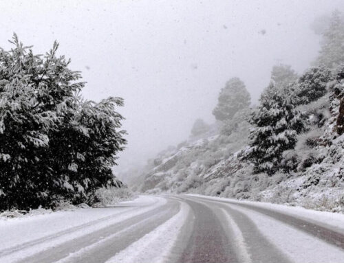 Winter Preparedness: Getting Your Car Ready for the Road